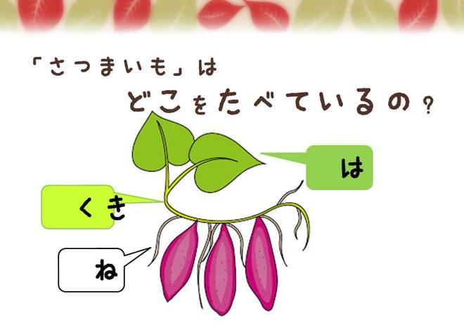 denbee_kura_86_7.JPG