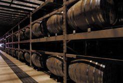 ジャンルを超えた蒸留酒「ジャパニーズスピリッツ薩州魂」の誕生