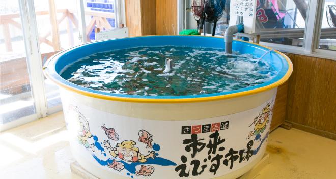 kiji_denzo_13_10.jpg